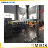 Le ce a reconnu le levage hydraulique de stationnement de véhicule de deux postes pour le garage