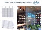 Schermo di visualizzazione di vetro del LED di colore completo