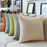 مصنع أريكة زخرفيّة خلفيّة وسادة تغطية يطبع [ثروو بيلّوو] حالة