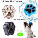 Waterdicht IP66 3G GPS van het Huisdier Volgend Apparaat (V40)