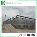 De Serre van het Blad van het Polycarbonaat van de multi-Spanwijdte van de tuin/van het Landbouwbedrijf/van de Tunnel voor nam/Aardappel toe