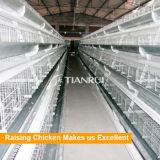 Haute qualité de la couche d'oeufs de poulet galvanisé à chaud des cages de poule