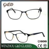 Het Optische Frame van het Oogglas van Eyewear van de Glazen van het Metaal van het nieuwe Product