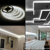 DC12V Luz diurna LED blanco Flex Strip Light 3528 SMD 5m / Roll