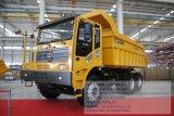 Lgmg 떨어져 공도 광업 덤프 트럭 팁 주는 사람 트럭 Mt86 80t