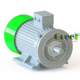 revolución por minuto inferior de 1kw 600rpm alternador sin cepillo de la CA de 3 fases, generador de imán permanente, dínamo de la eficacia alta, Aerogenerator magnético
