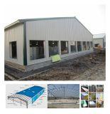 Structue d'acciaio prefabbricato ha progettato la Camera dell'azienda avicola