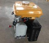Robin Gasoline Engine Ey20