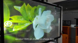 Film d'écran olographe auto-adhésif de projection arrière/clinquant olographe