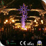 Indicatore luminoso di via decorativo personalizzato di disegno di festa di nuovo anno 2D