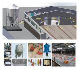 Structue de aço pré-fabricado projetou a casa da exploração avícola