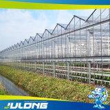 Венло сельского хозяйства выбросов парниковых газов из закаленного стекла для выращивания овощей роста