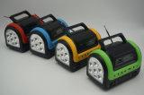5W kit solare della batteria 4ah del comitato solare 3PCS 3W LED del caricatore chiaro del telefono mobile