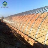 Лучшая цена пленки PE крышки солнечной сельского хозяйства парниковых