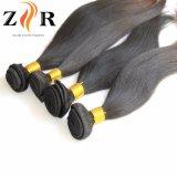 trama natural do cabelo humano de matéria- prima da cor do preço 7A barato