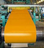 [بربينت] يغلفن فولاذ ملا مع كثير لون