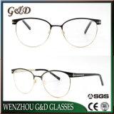 De verse Nieuwe Glazen van Eyewear van het Metaal van het Schouwspel van Mannequins In het groot