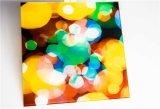 Qualitäts-ausgeglichenes Glas für Decorativing (JINBO.)