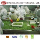 Haricots de soja de la qualité IQF