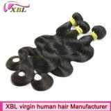 As extensões naturais do cabelo vendem por atacado o cabelo brasileiro do Virgin