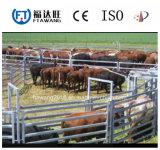 Cerca galvanizada nuevo estilo del ganado/cerca de la cerca de la granja/del campo del prado