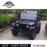 Gemaakt in het Verkopen van de Fabriek van China Goedkoper het Rennen Go-kart (jy-ATV020)