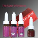 De Tatoegering Eyebrcow van Coscmetics van Goochie/Ecip Permanente Inkt Makecup