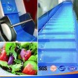 Trasportatore piano dell'acciaio inossidabile della cinghia per la verdura con velocità variabile