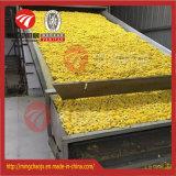 De poivre et de s/poivron de bande de conveyeur de séchage de machine d'usine vente directement