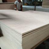 Okoume ante la Junta de muebles de madera contrachapada Señor pegamento