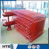 中国の製造者からのボイラーの高温放射蒸気の極度のヒーター