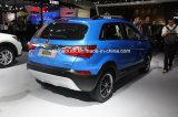 SUV di qualità superiore cinese--Automobile SUV di Gasoline1.5t Mt Q25
