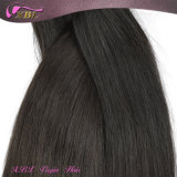 膚触りがよいStraight 8A Grade Hair Extension CheapブラジルのHair Weave