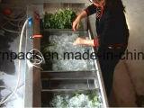 Surf фруктовых напитков машины для промывки линии