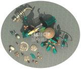 Kaiqi klassisches altes Dinosaurier-Spielplatz-Gerät der Stamm-Serien-Kq60008A