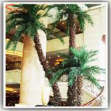Подгонянная пальма крытой фальшивки ландшафта искусственная