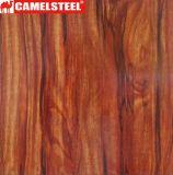 Деревянные зерна PPGI Prepainted оцинкованной стали катушки зажигания
