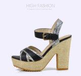 Ботинки сандалий платформы Weave женщин высоких пяток повелительницы Заплатки вскользь