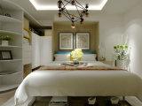 Muebles de hogar de pared Murphy cama con Escritorio