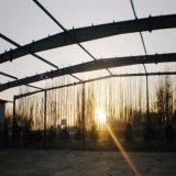 Construction préfabriquée d'entrepôt de structure métallique pour la mémoire