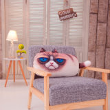 Haupttextilnette Polyester-Katze-dekoratives Kissen