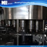 中国の工場からの炭酸飲料水満ちるプラント