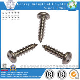 Acero inoxidable Autoperforantes Tornillo