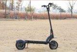 Bici elettrica del motorino della bicicletta delle 3 rotelle