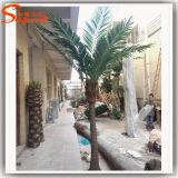 Fabrik-Preis-Großverkauf-künstliche Palme für Garten-Dekoration