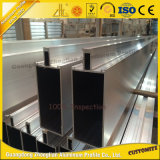 Divers design en aluminium Panneau en aluminium de mur-rideau avec Décoration