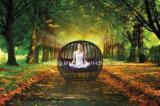 فندق أثاث لازم [سونبد] مع ظلة خارجيّ حديقة ردهة [سفا بد]