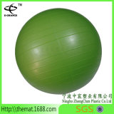 ポンプおよび球の基礎販売の適性のヨガのPilatesの球が付いている練習の球