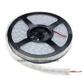 Doppio indicatore luminoso di striscia unico di riga 5050 LED di disegno 120LED/M