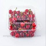 ein rechteckiger Kirschkasten mit einem Kasten Obst- und GemüseNahrung- für Haustierekästen